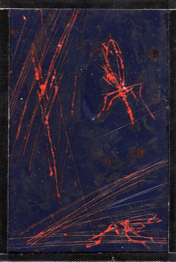 tinne-roza.series.05